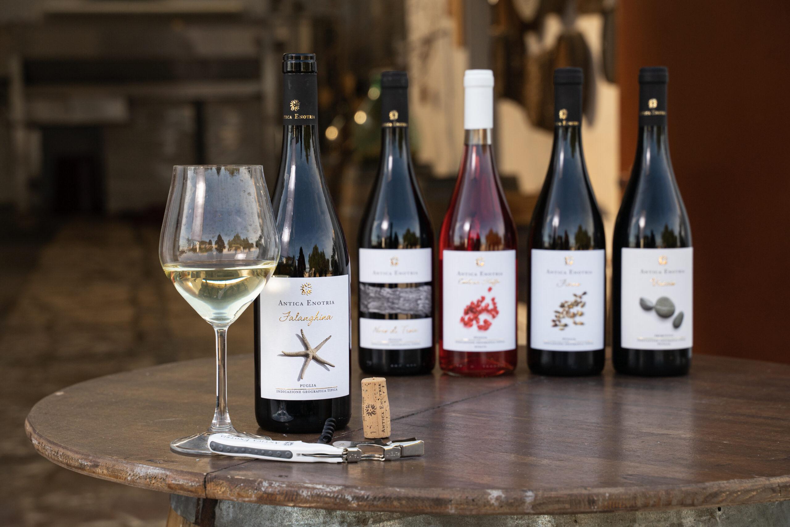 Falanghina IGT Puglia. La nostra idea di vino bianco
