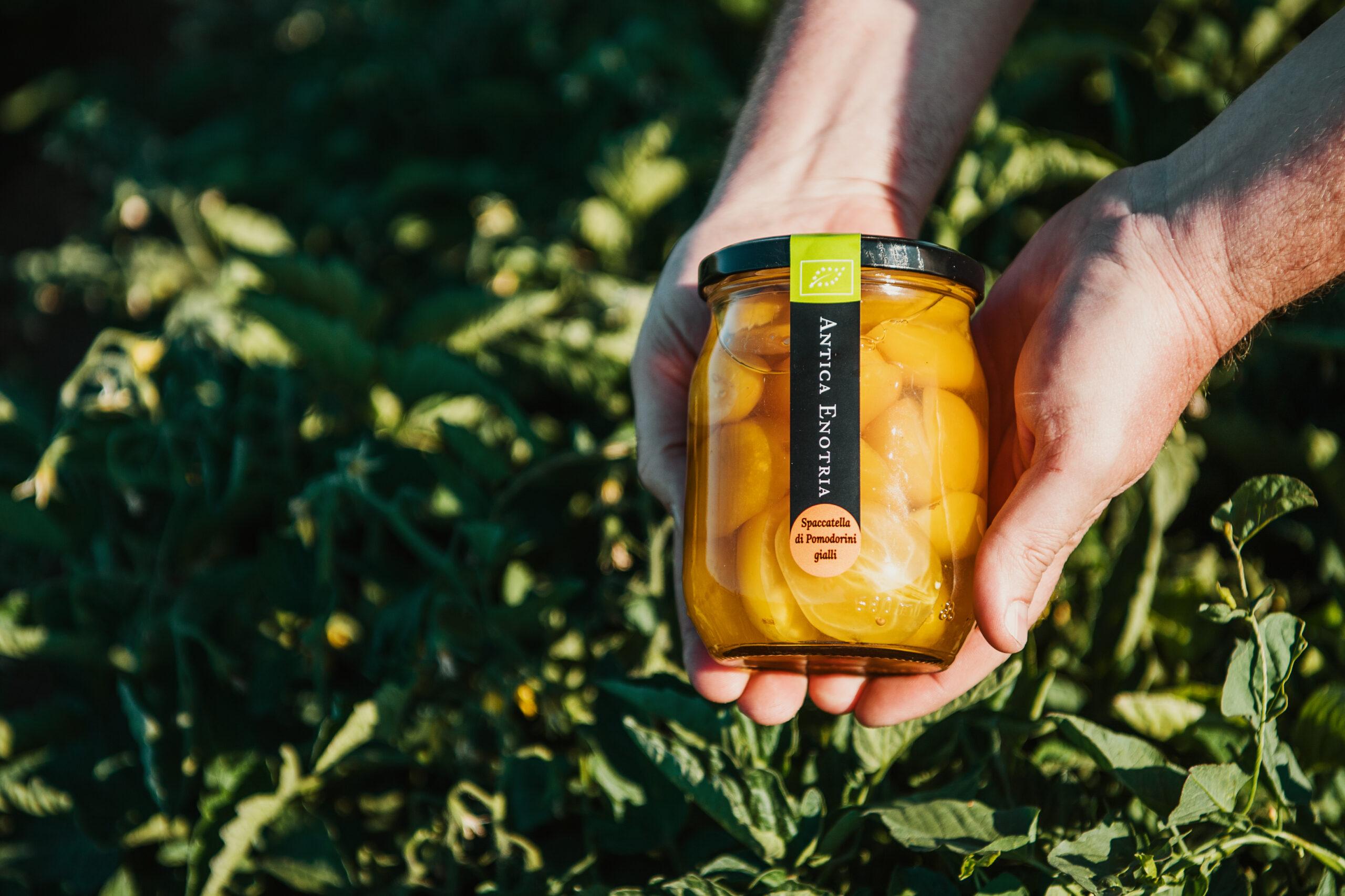Pomodorino giallo: ecco le migliori ricette